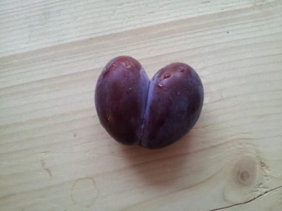 Herzpflaume_Gemüse-und-Obst-mit-Fehlern